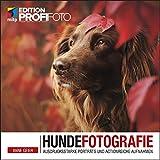 Hundefotografie: Ausdrucksstarke Porträts und actionreiche Aufnahmen (Edition ProfiFoto) (mitp Edition...