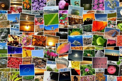stockfotografie bilder fotos fotosammlung