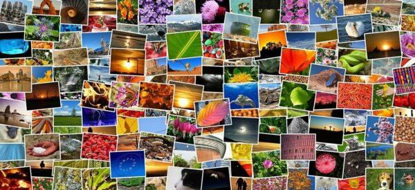 Vielfalt der Stockfotografie