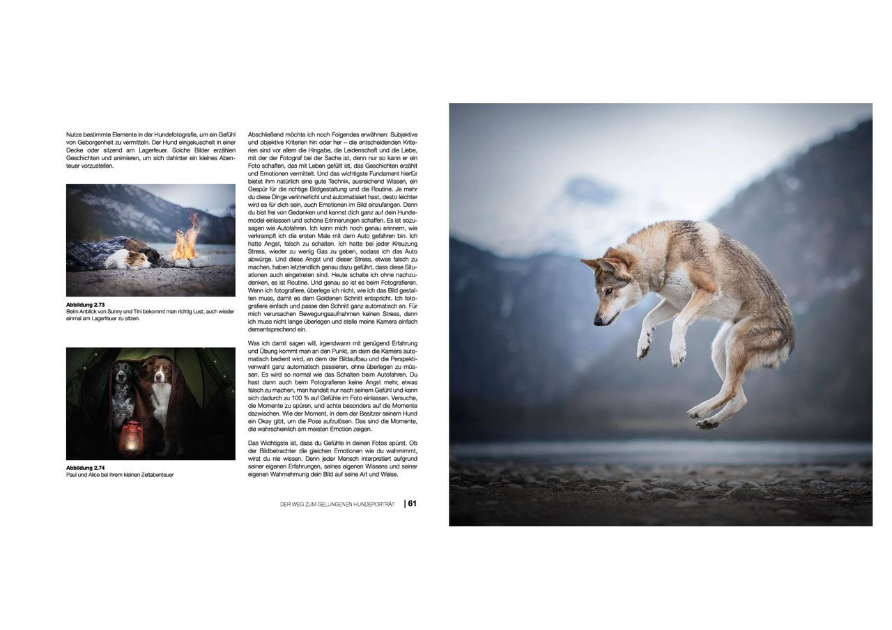 hundefotografie anne geier 02
