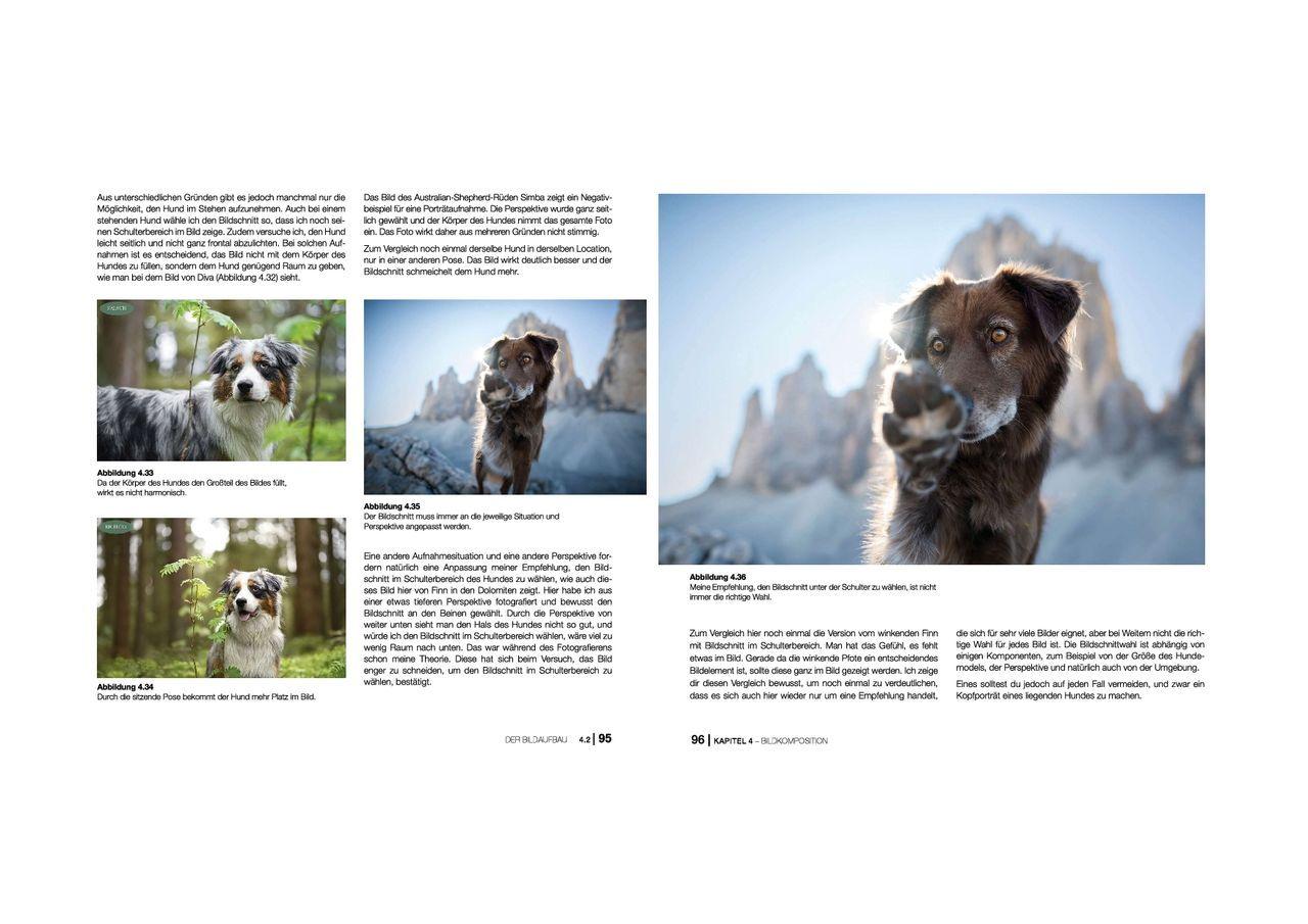 hundefotografie anne geier 03