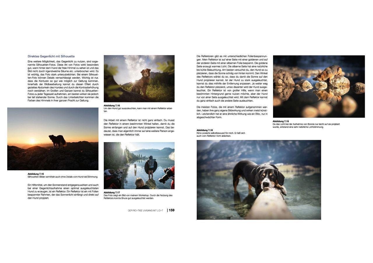 hundefotografie anne geier 04