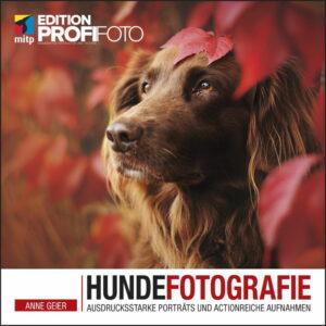Hundefotografie: Ausdrucksstarke Porträts und actionreiche Aufnahmen